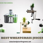 7 Best Wheatgrass Juicers [in 2021] - Top Picks and Buyer's Guide
