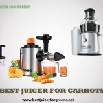 Best Juicer for Carrots Reviews 2021 - Top Hand Picked