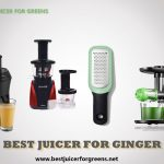 Best Juicers for Ginger 2021 - Top Picks and Buying Guide